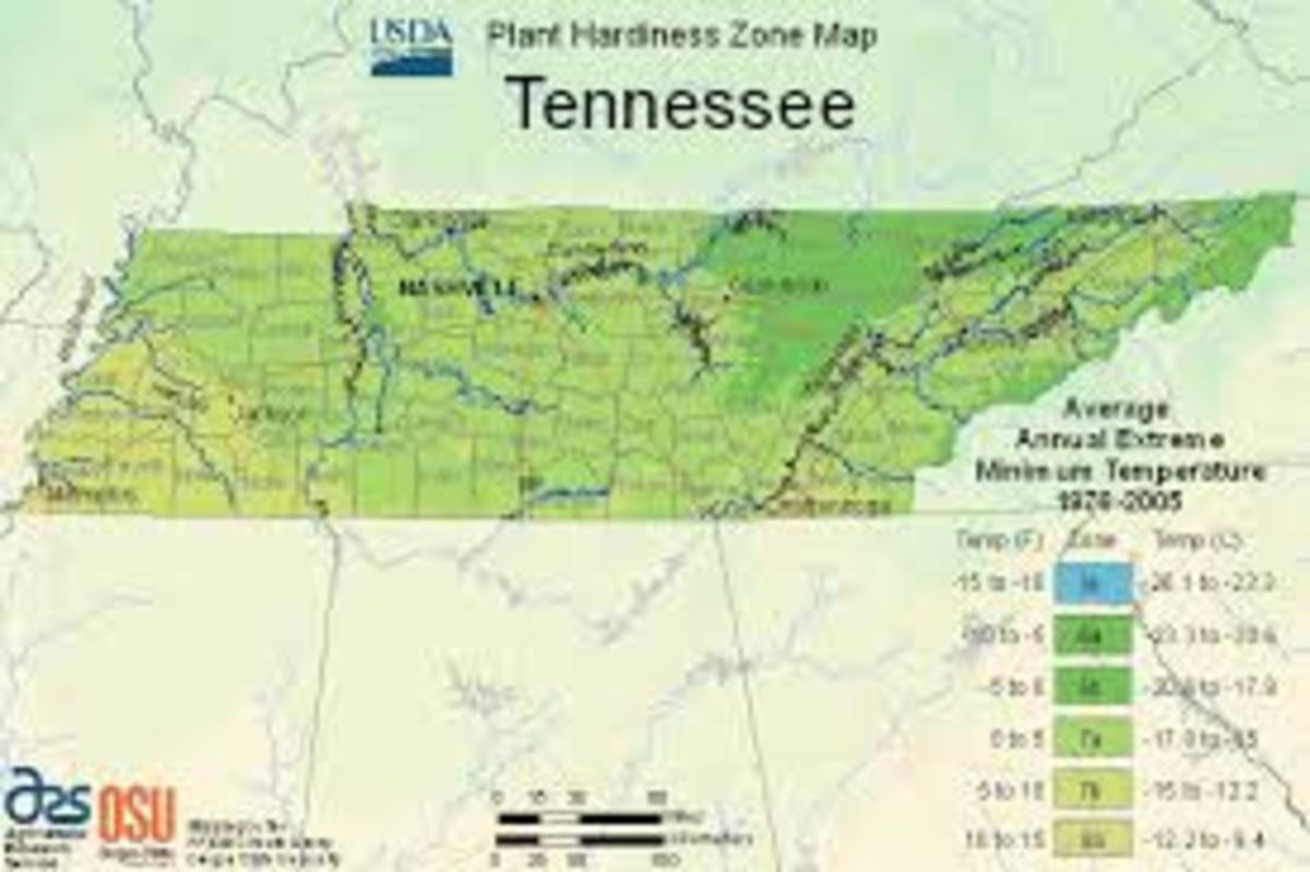 is-tennessee-a-good-state-to-go-off-the-grid