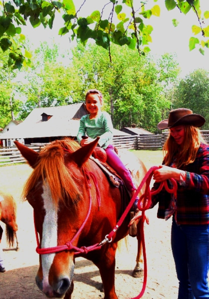 What could be more fun than a horsey ride? At the  Ottewell Homestead, 1885 St., Fort Edmonton Park.