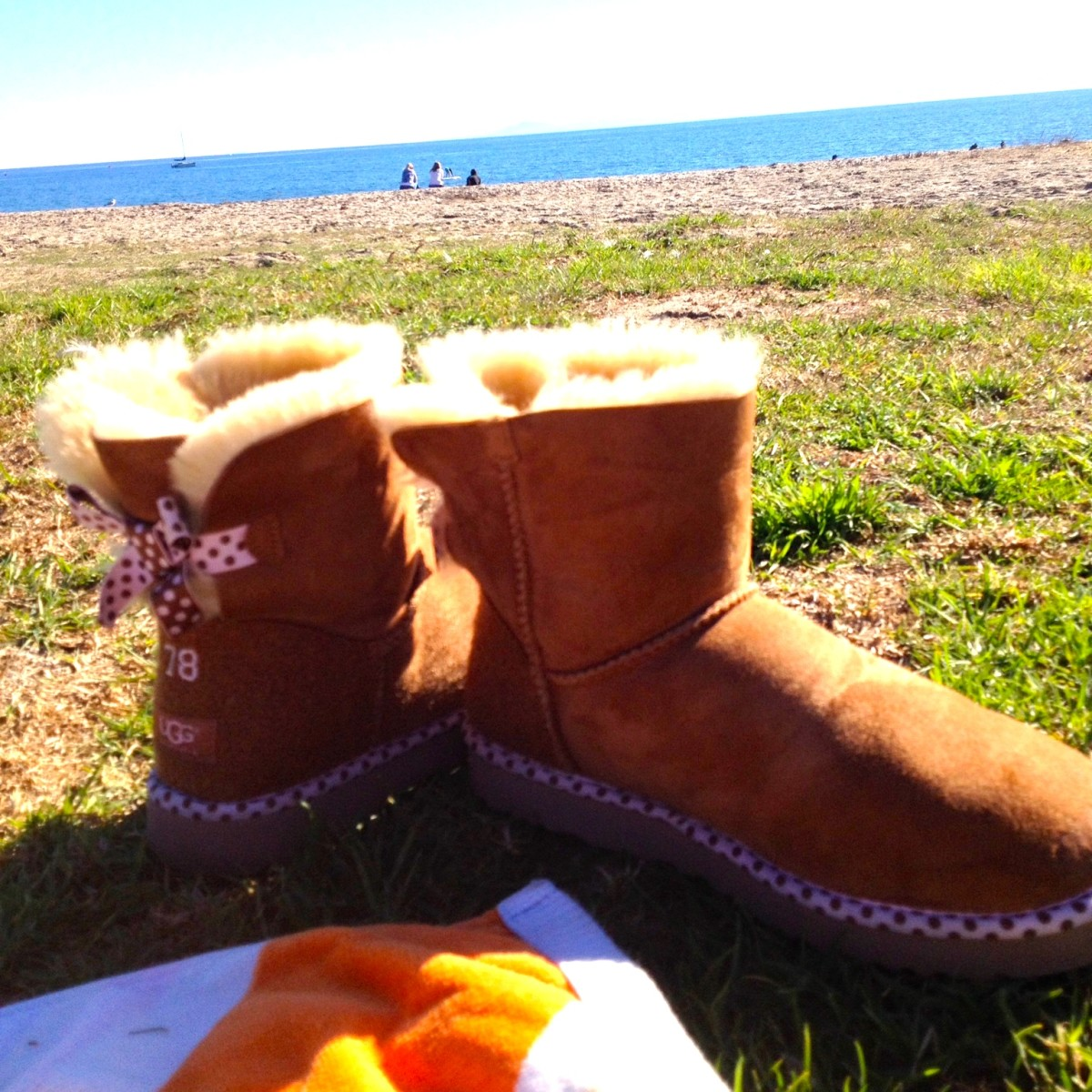 UGG catching some rays at the beach.