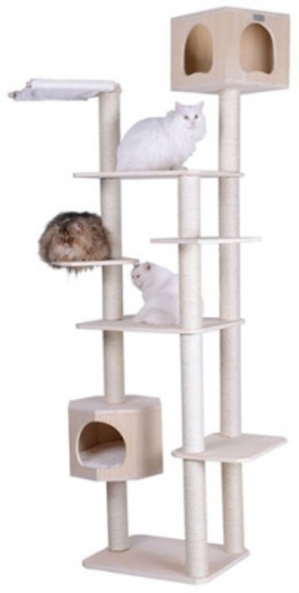 some-great-looking-and-sturdy-cat-trees