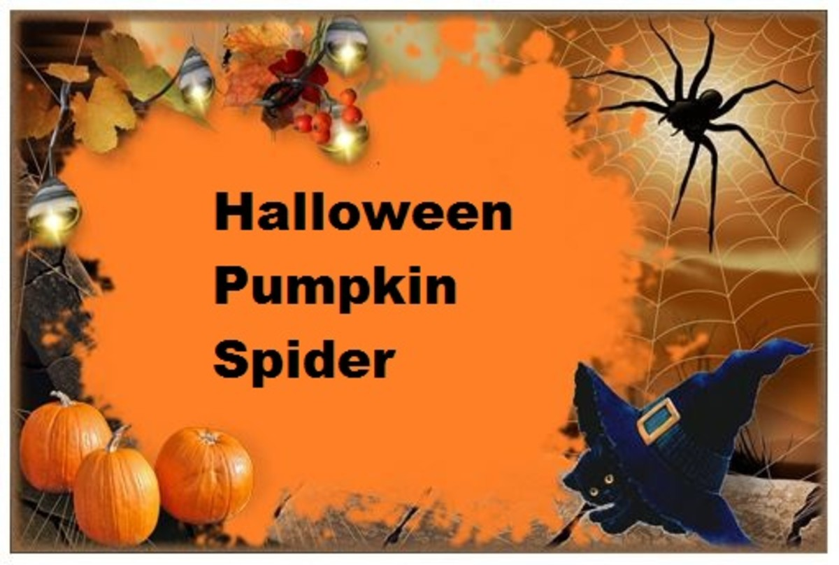 Halloween Pumpkin Spider Meme