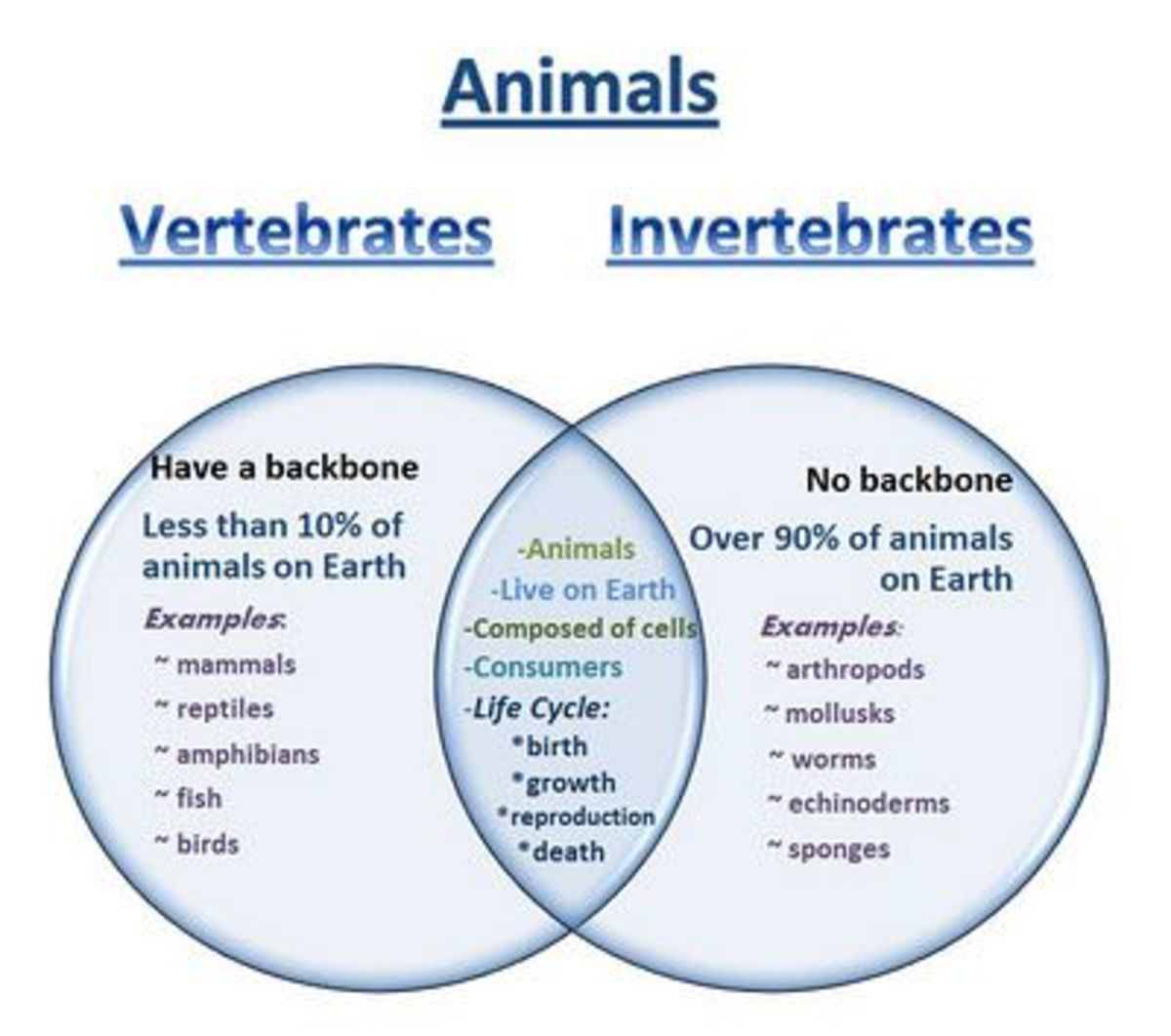 Animals are classified into two big groups.