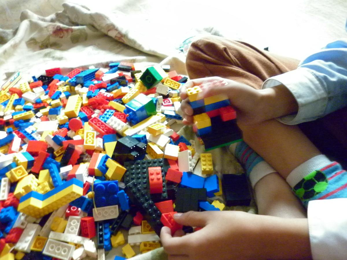 Child Development Theories - Down's Syndrome and Autism