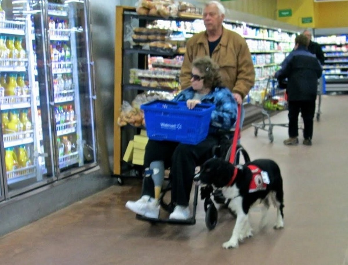 Hunter, Linda and Bob shopping.