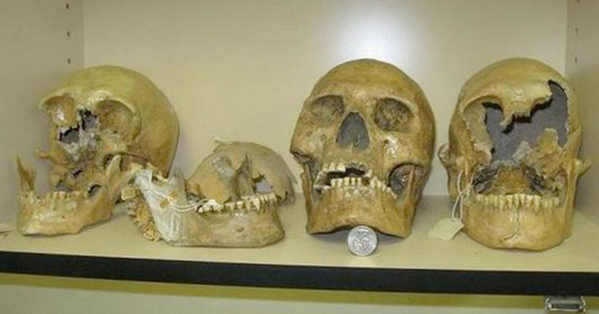Skulls found at Lovelock Cave