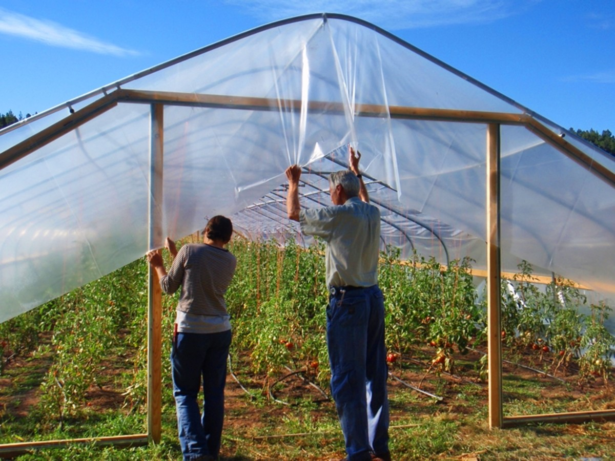 Covering a greenhouse with polythene film