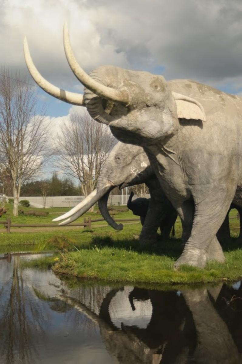 Statues of Stegomastodon at Parque Pleistocénico in Osorno.