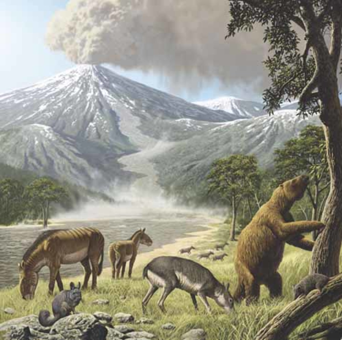 Tinguiririca's fauna shortly before burial: (from left to right) the rodent Eoviscaccia, the notoungulates Eomorphippus, Santiagorothia, and Archaeotypotherium, the ground sloth Pseudoglyptodon, and the marsupial Klohnia. Art by Raúl Martín.