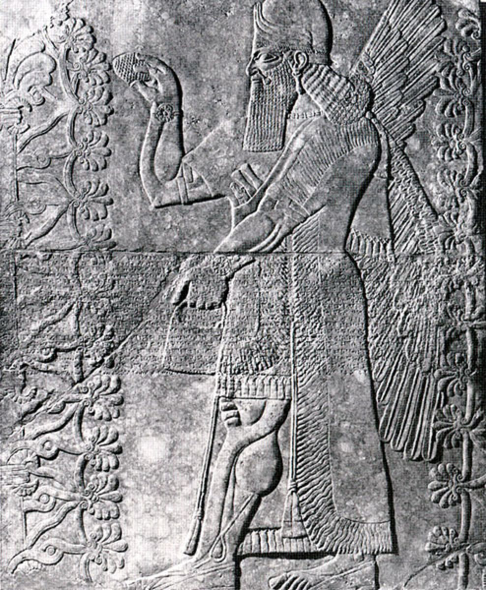 Early records of plant hybridization-Assyrian pollinating Date palm(4,000 BC)