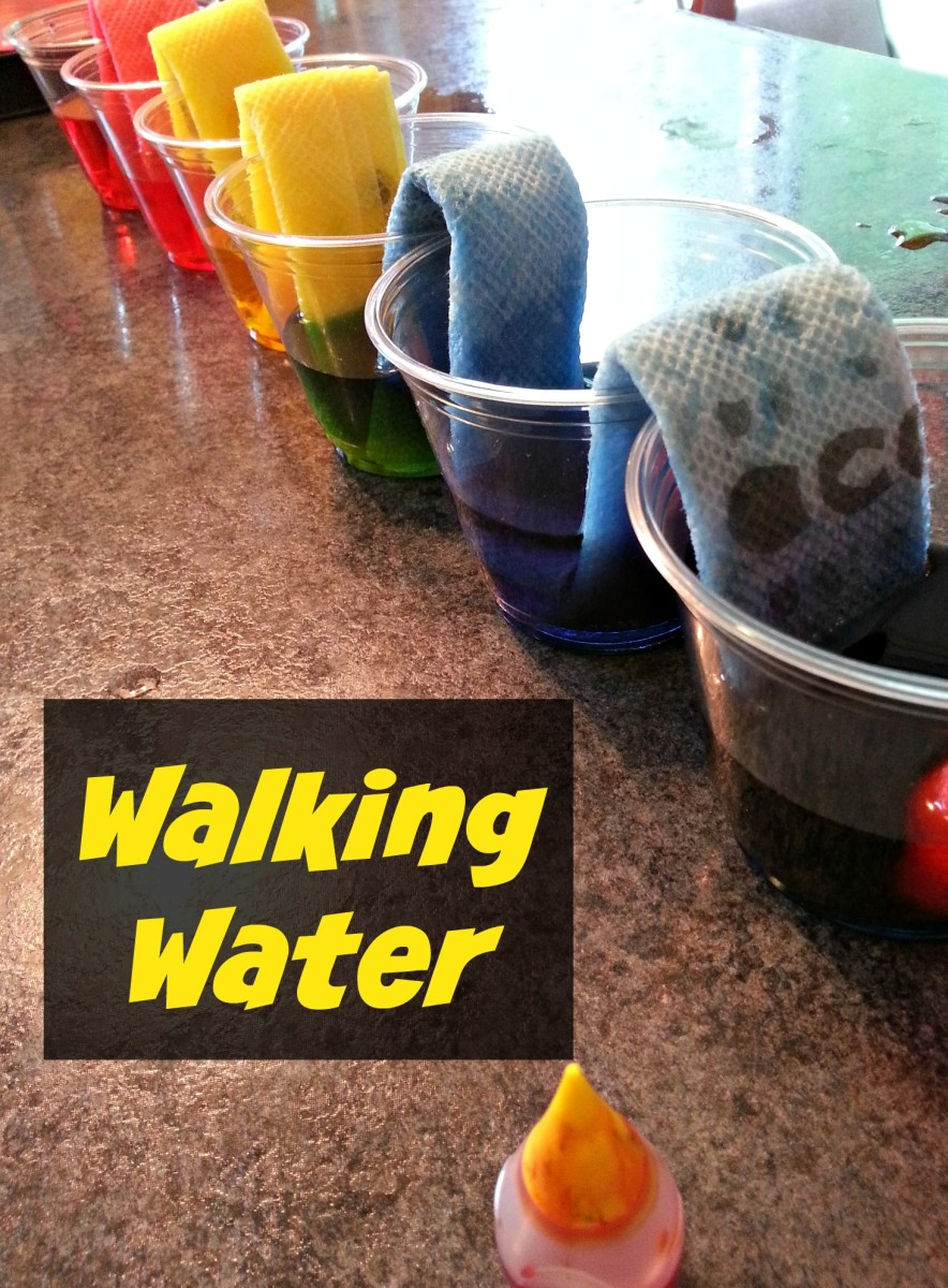 Make water travel from one cup to the next with this fun science experiment.
