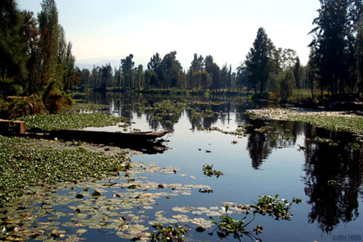 Lake Xochimilco  CC: Ale*