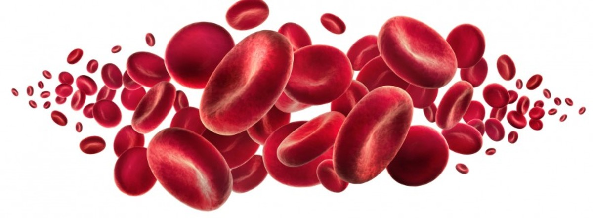 Anemia Causes, Symptoms, Treatments and Diets to Know about and Follow