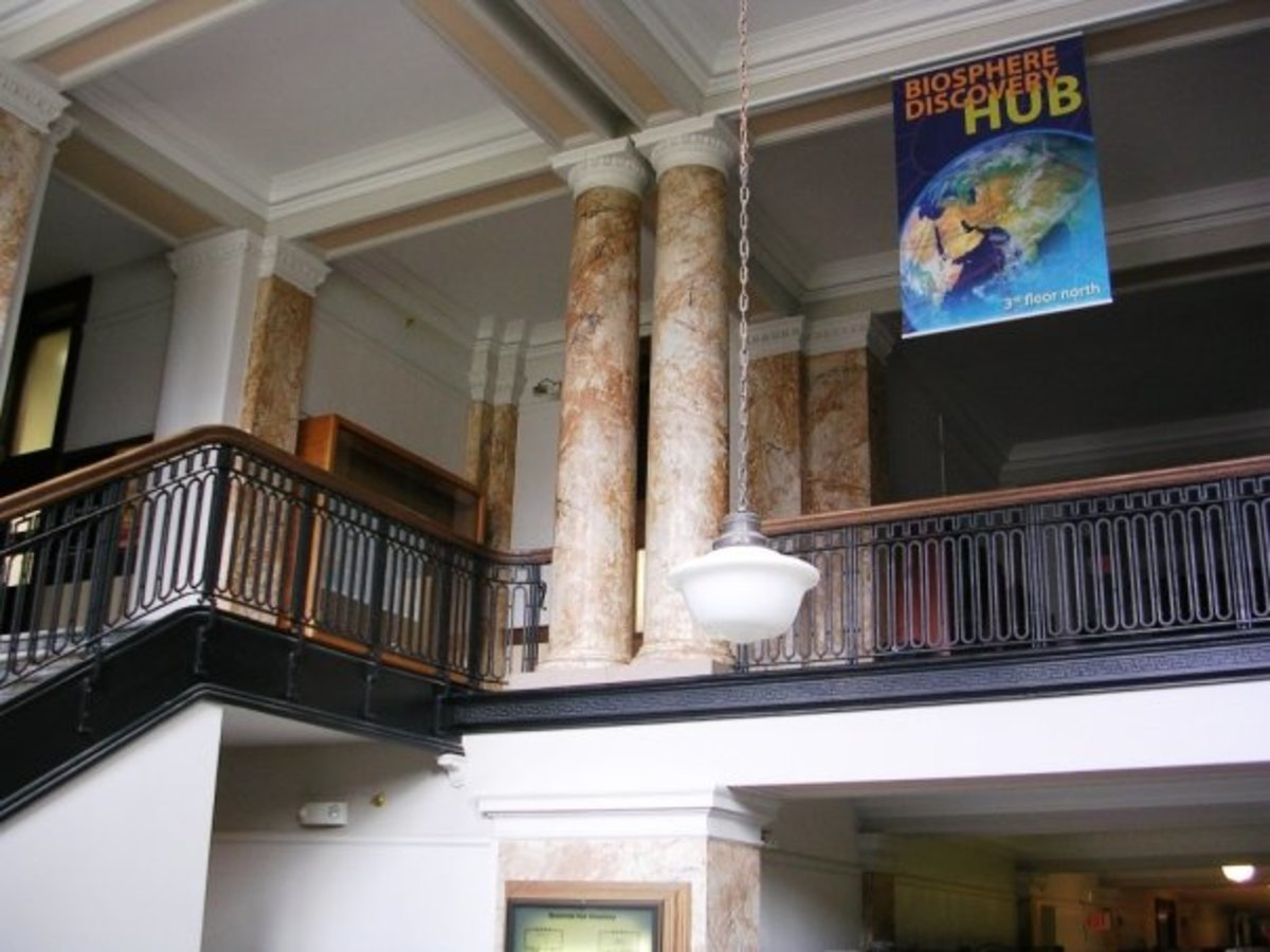 The Natural History Museum at the University of Iowa.