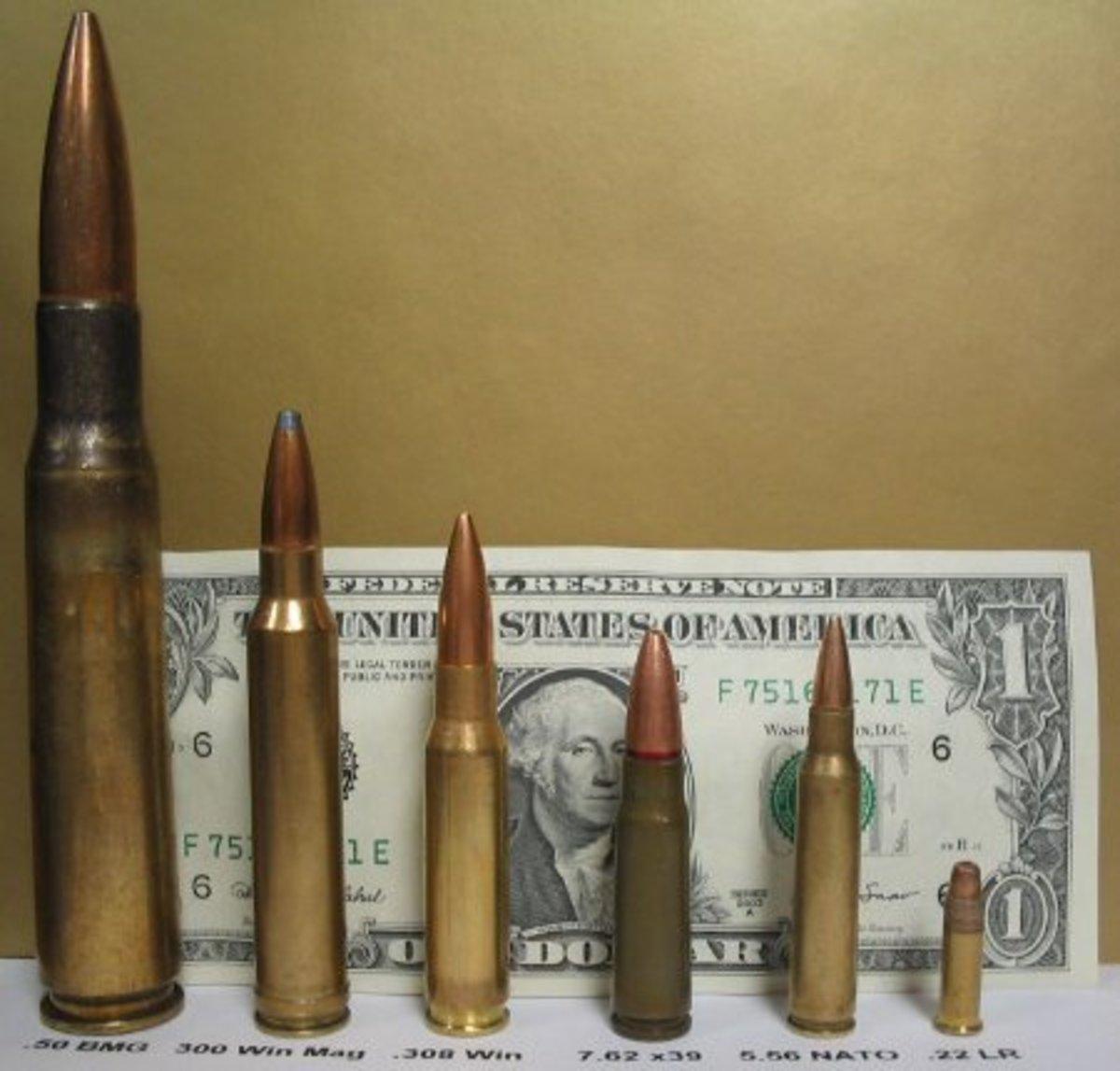 From L-R: .50 BMG, .300 Win Mag, .308 Winchester, 7.62x39mmR, 5.56x45mm, .22LR