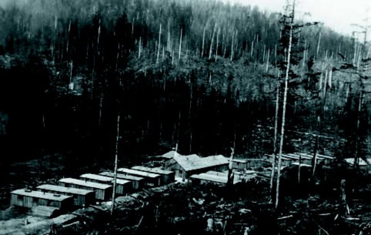 original photograph