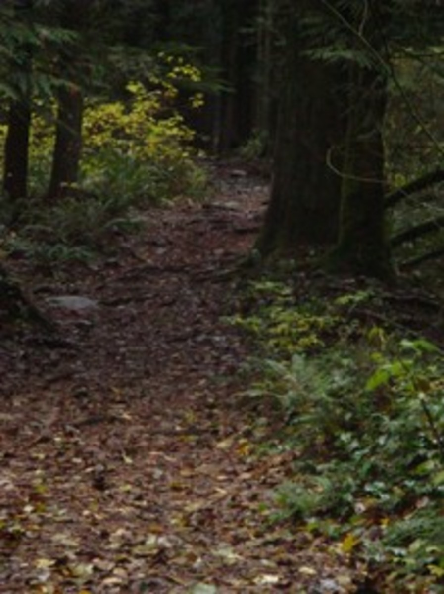 incline trail