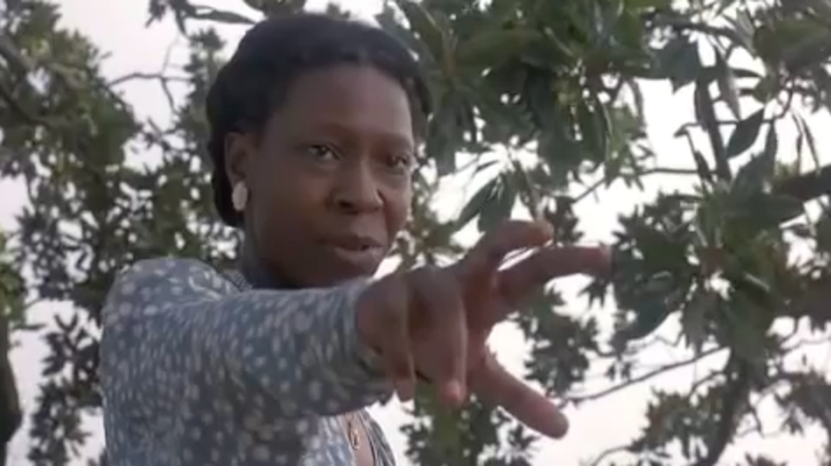 """The graveness and fear that a hoodoo curse can bring are graphically illustrated when the character Celie puts a curse on """"Mister,"""" her estranged husband in the movie, The Color Purple."""