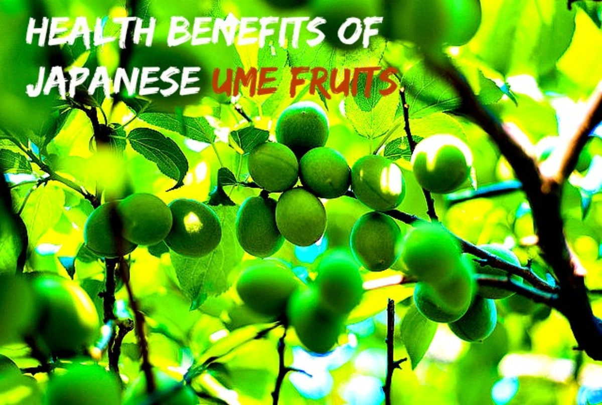 Health Benefits Of Ume (Japanese Plum)