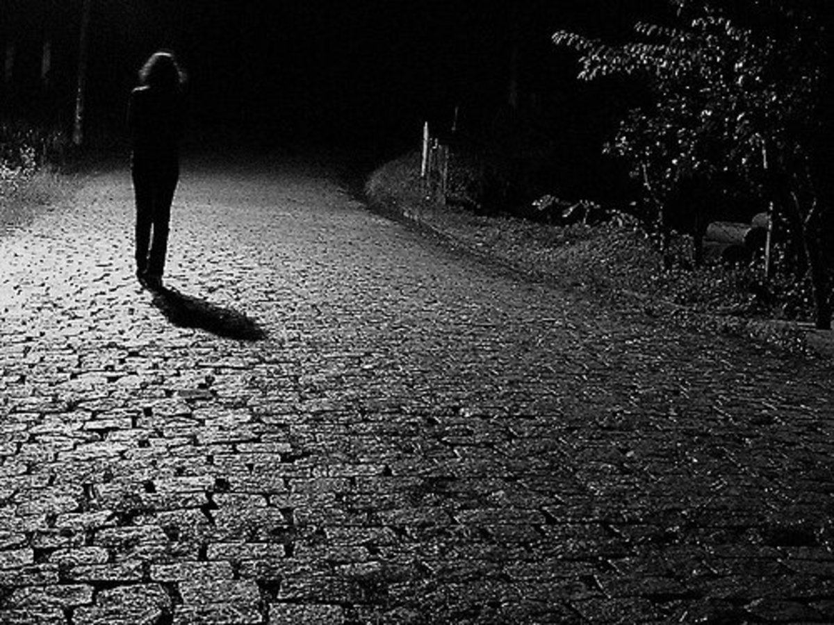what-i-learned-from-a-walk-in-the-dark