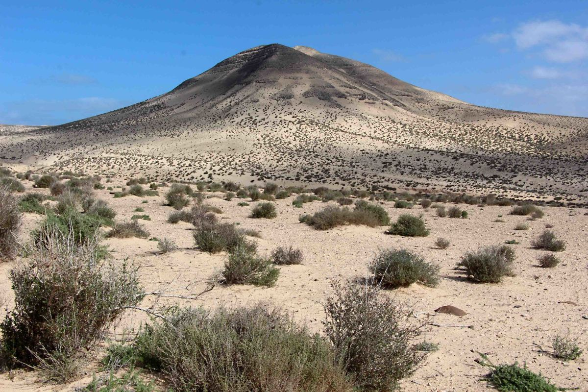 The countryside in southern Fuerteventura photographed in Barranco de Pecenescal in the Municipality of Pajara