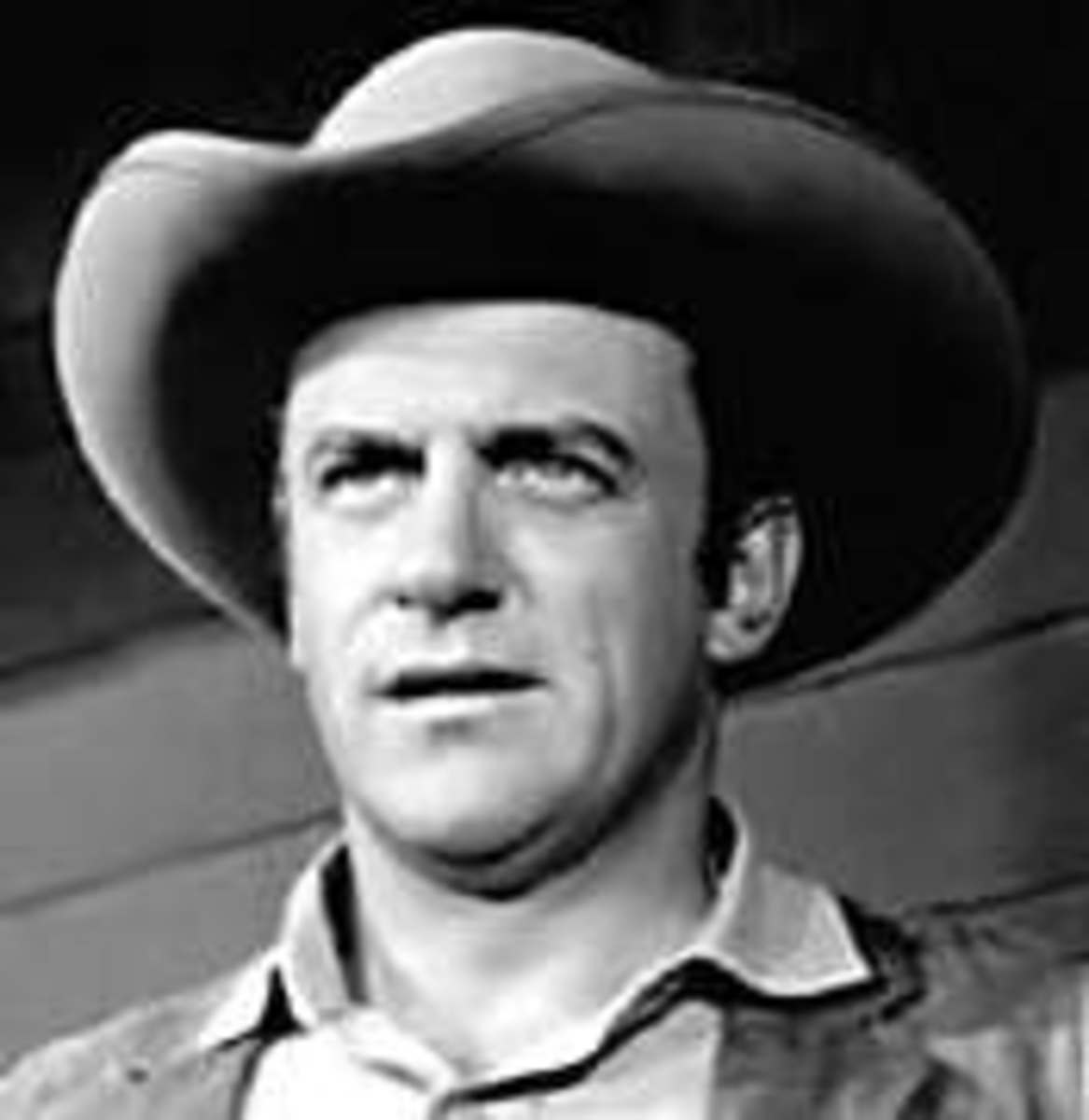 James Arness Net Worth