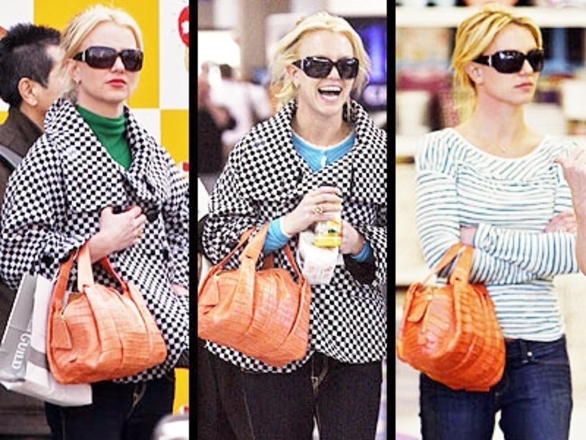 how-many-handbags-does-one-woman-really-need