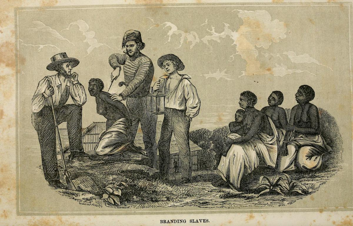 science-support-of-slavery
