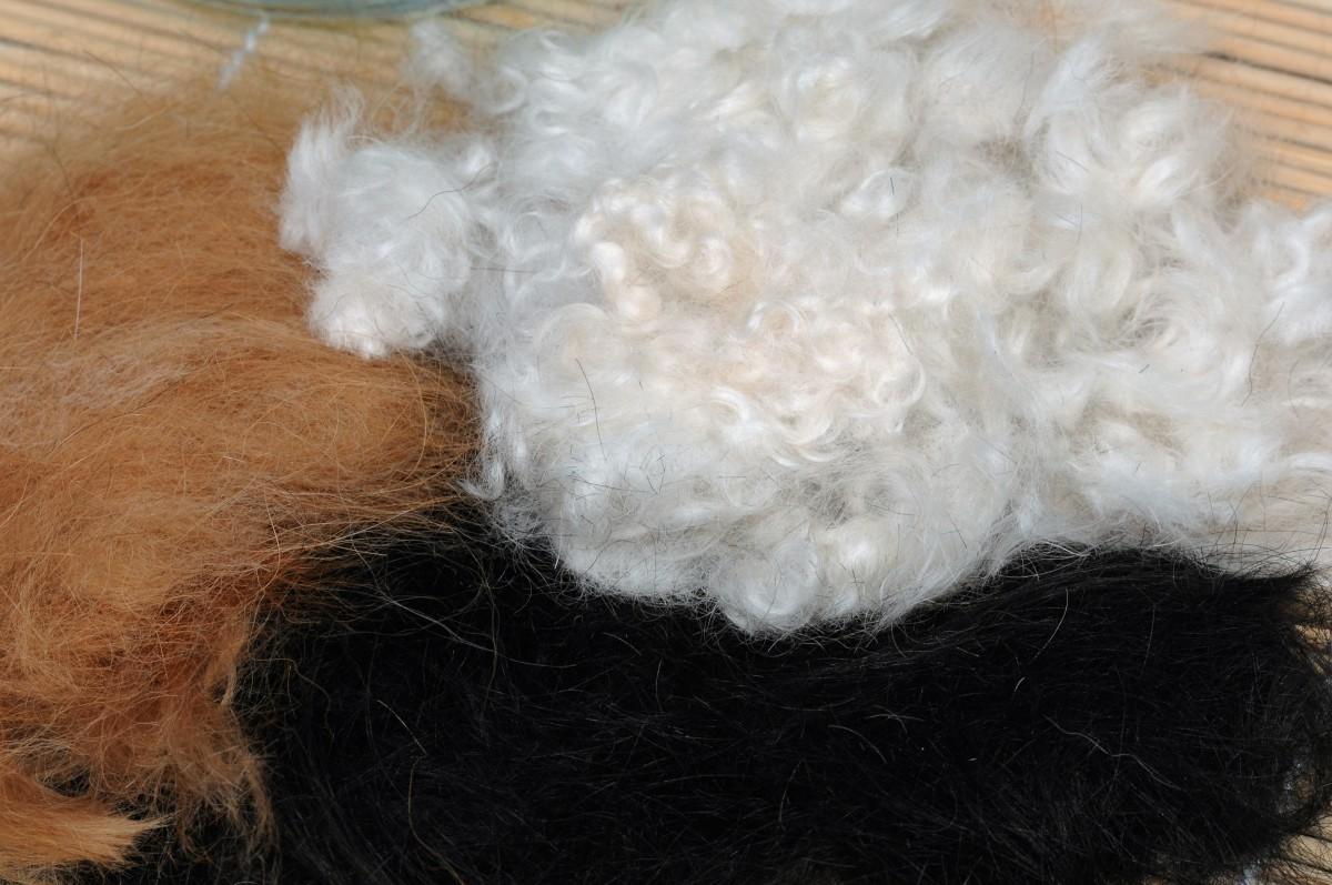 A variety of dog hair