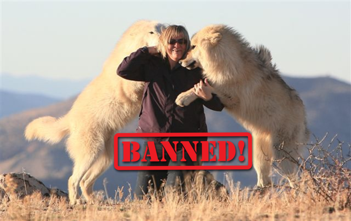 Dogs BANNED in other countries