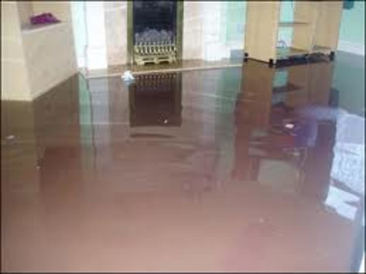 Carpet Submerged in Water - A Truly Overwhelming Sight