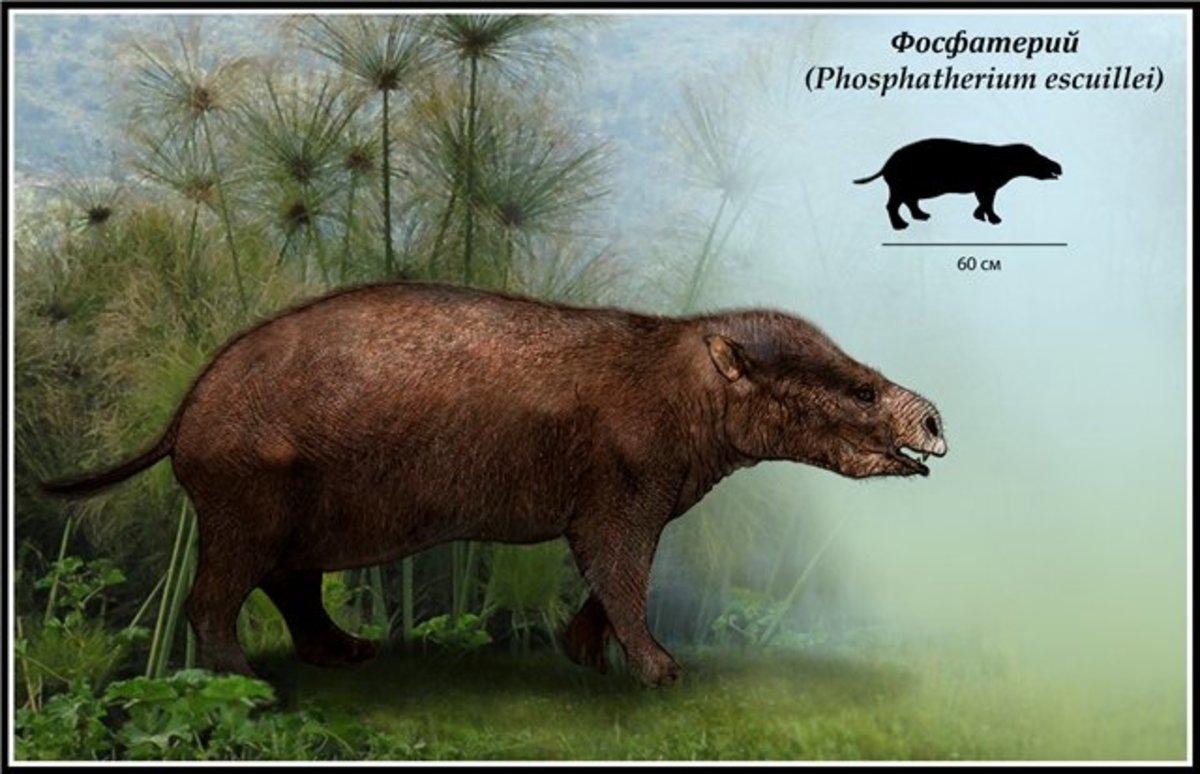 Phosphatherium. Artist unknown.