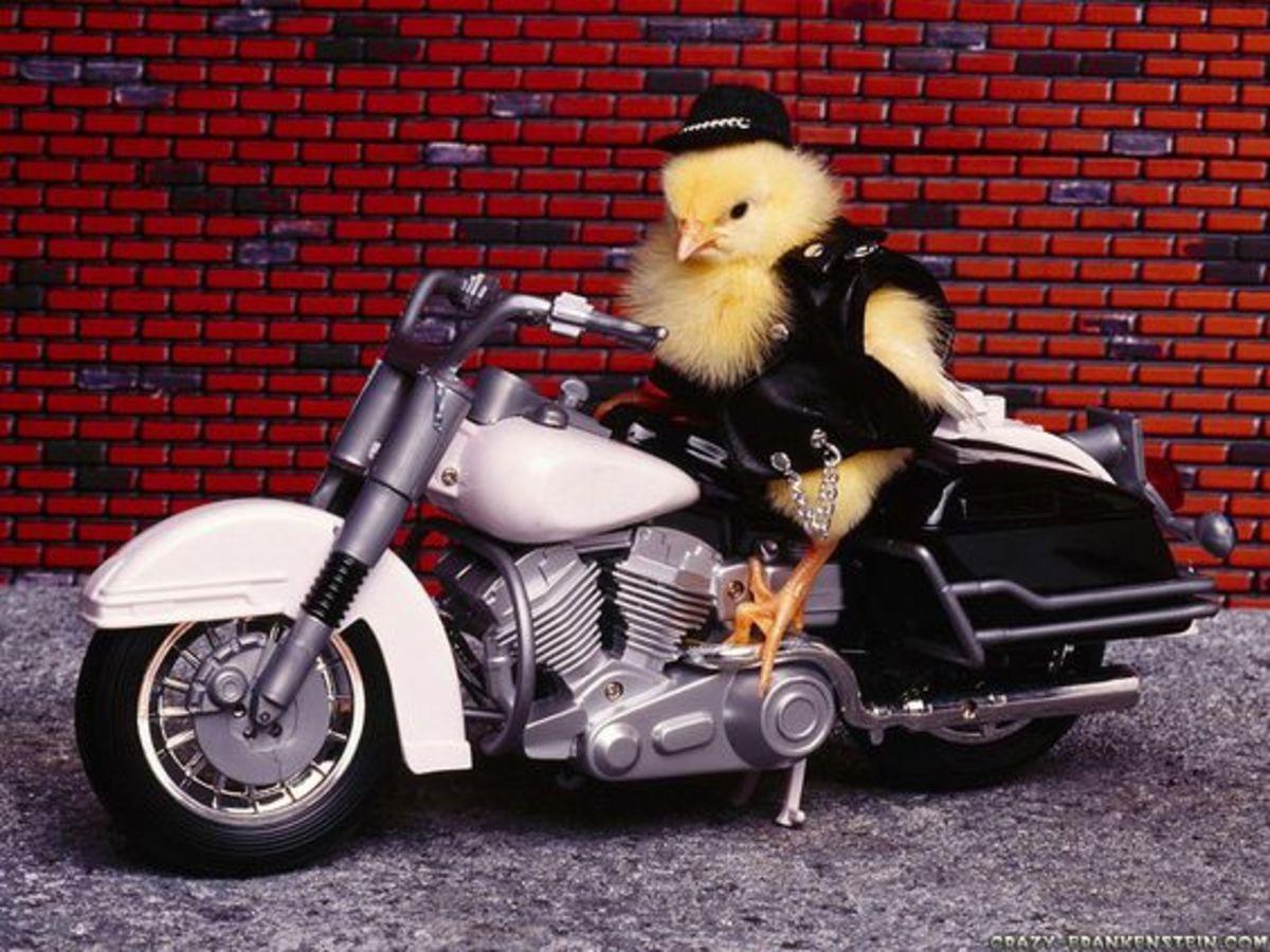 Biker Chick Costume