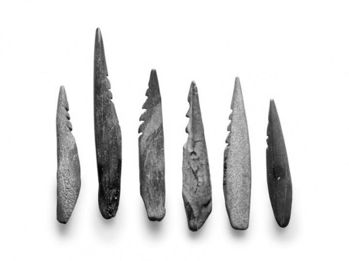 Hunting spear heads