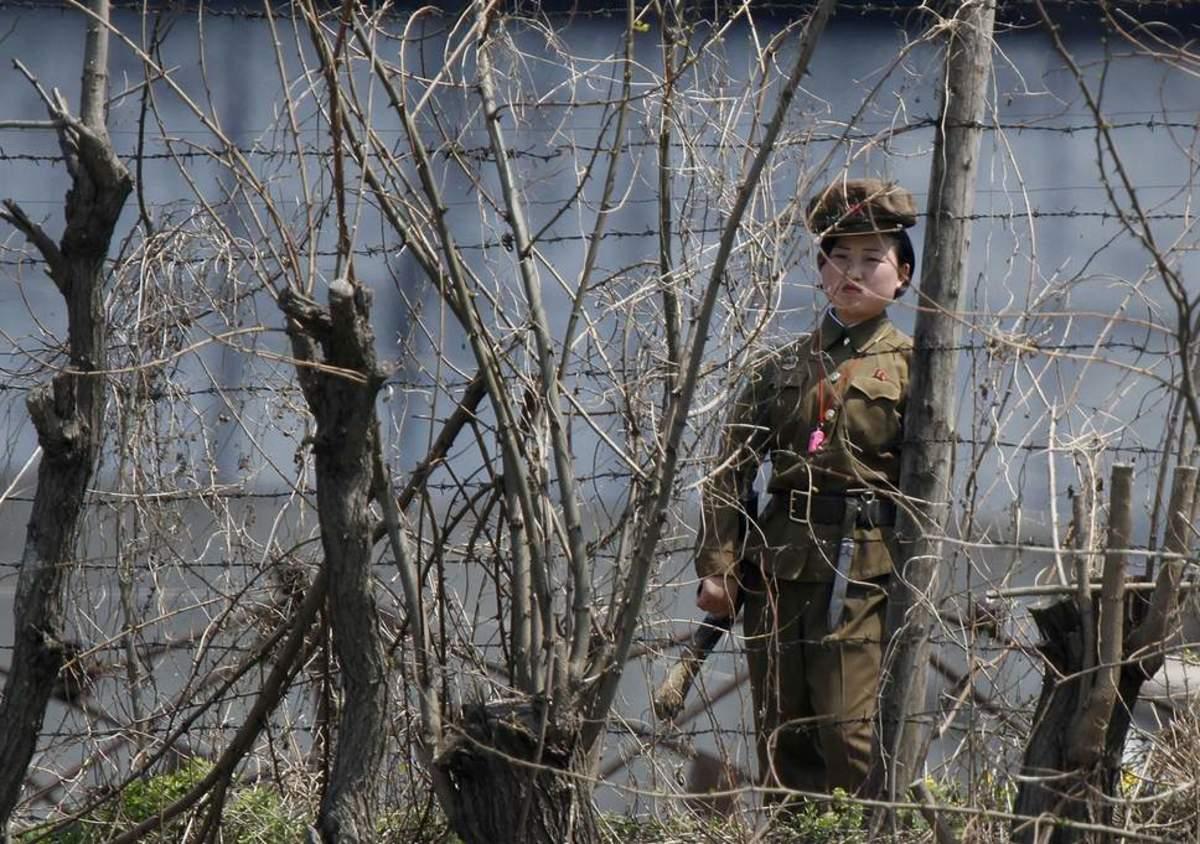 North Korea: Crime and Punishment
