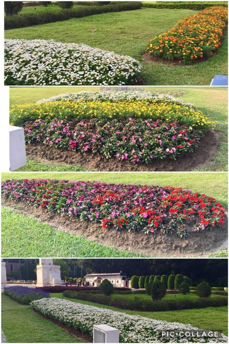 The flower beds at the Liberty Square