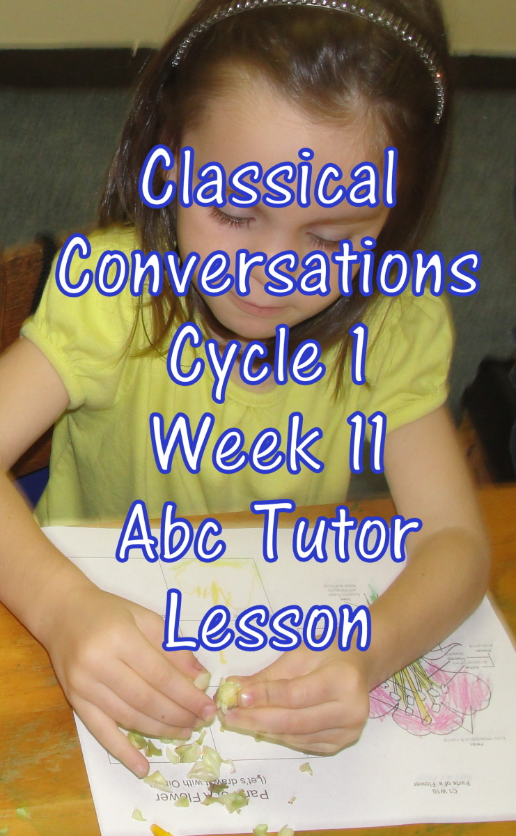Classical Conversations Cycle 1 Week 11 Abc Tutor Plan - Science Activity: Dissecting a Flower