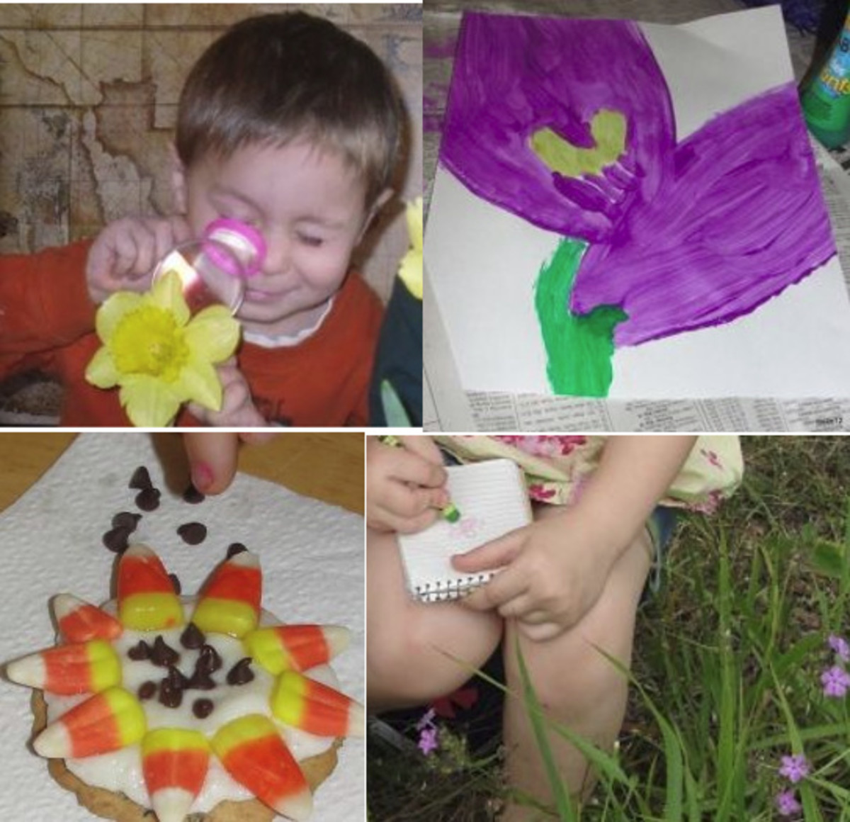 Some of the many fun activities we did while learning about flowers using the above lesson