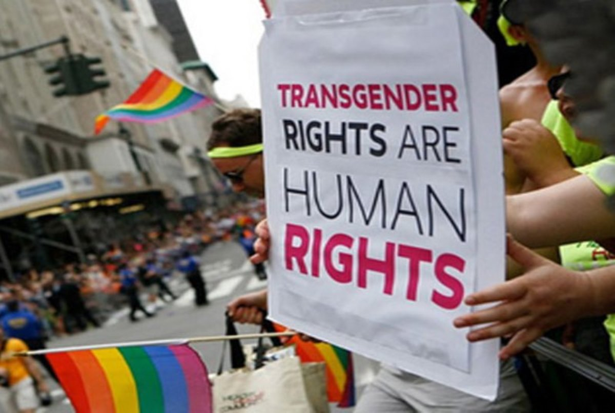 What's Driving the Transgendered Movement and Why