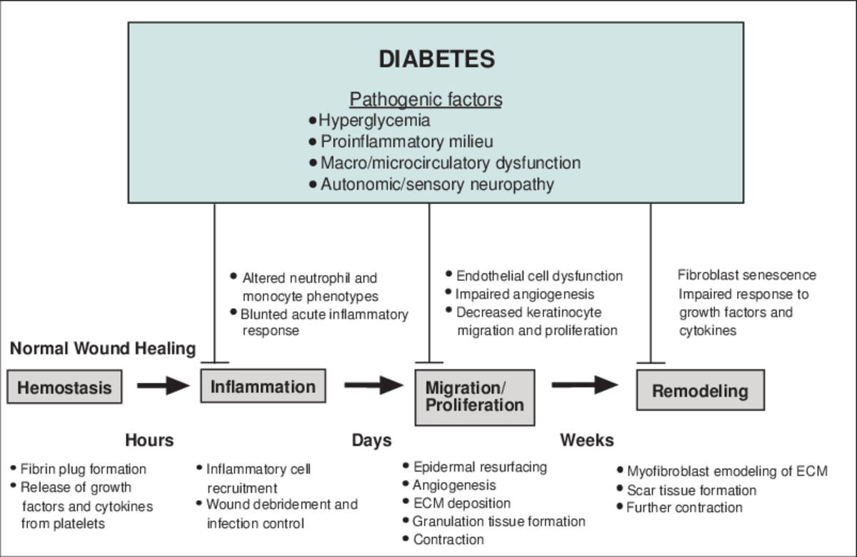 PATHOBIOLOGY OF DIABETIC FOOT