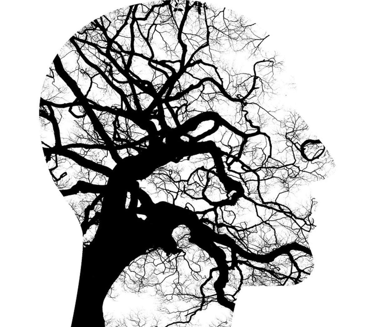 Bipolar Disorder: The Illness of