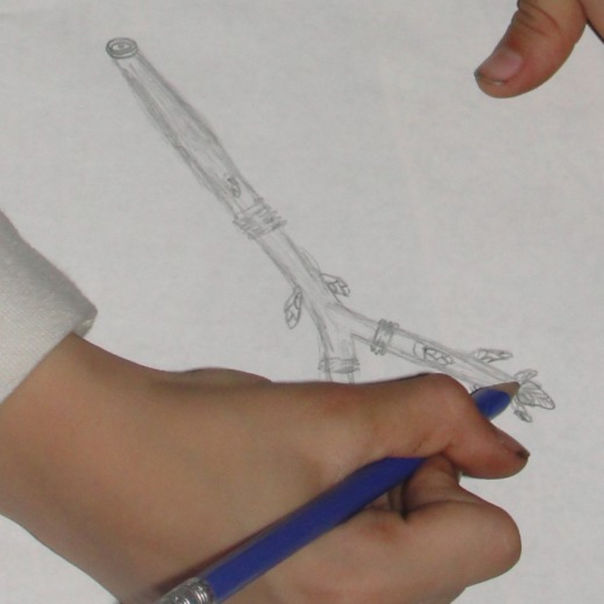 A student sketching a twig