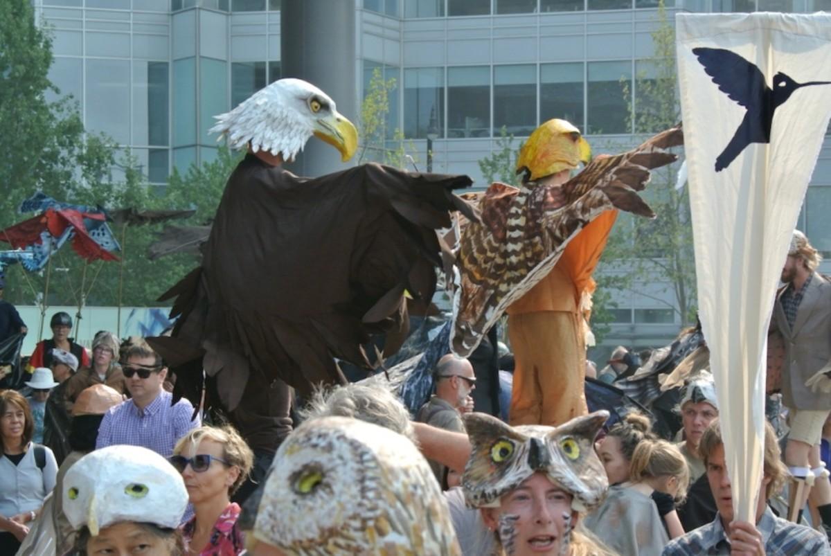 Vancouver Bird Festival
