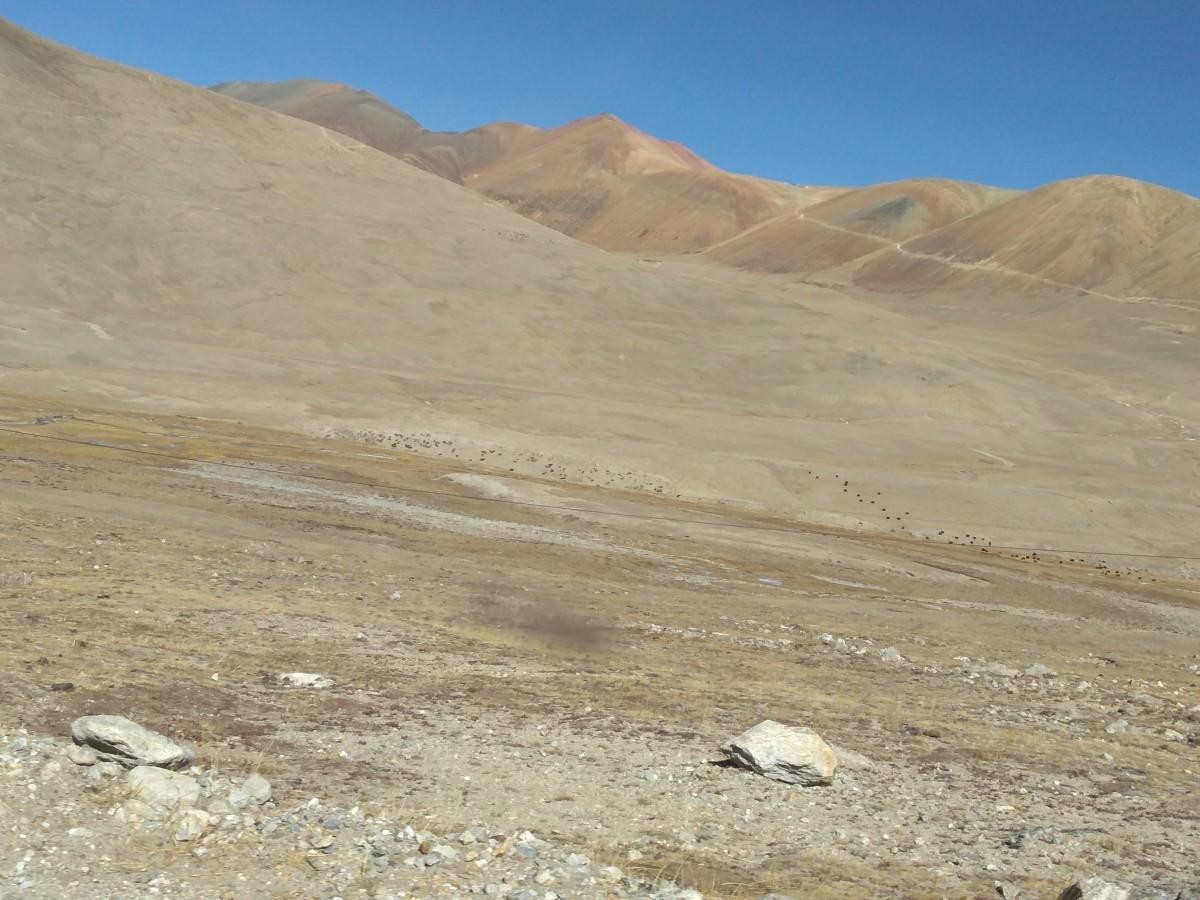 Desert-like region at a high altitude