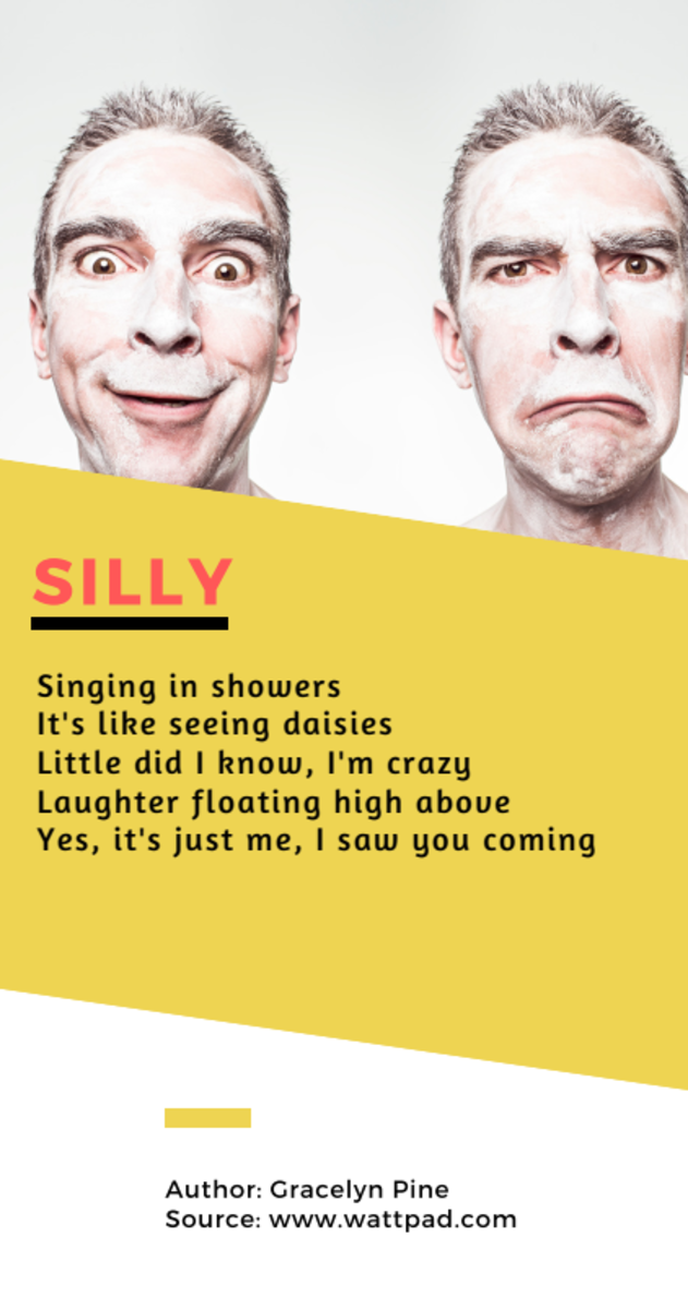 Acrostic Poem about Silly