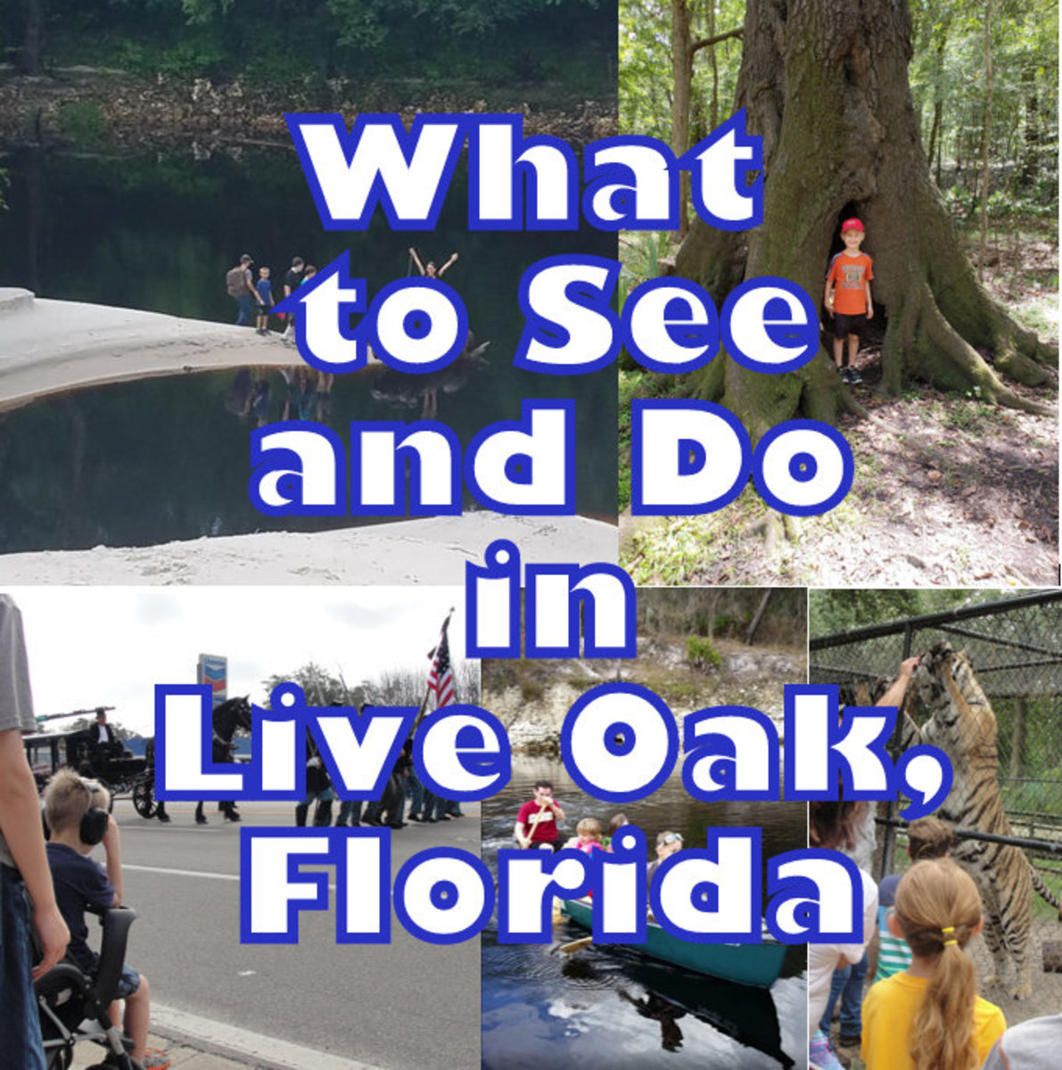 What to See and Do in Live Oak, Florida in Suwannee County