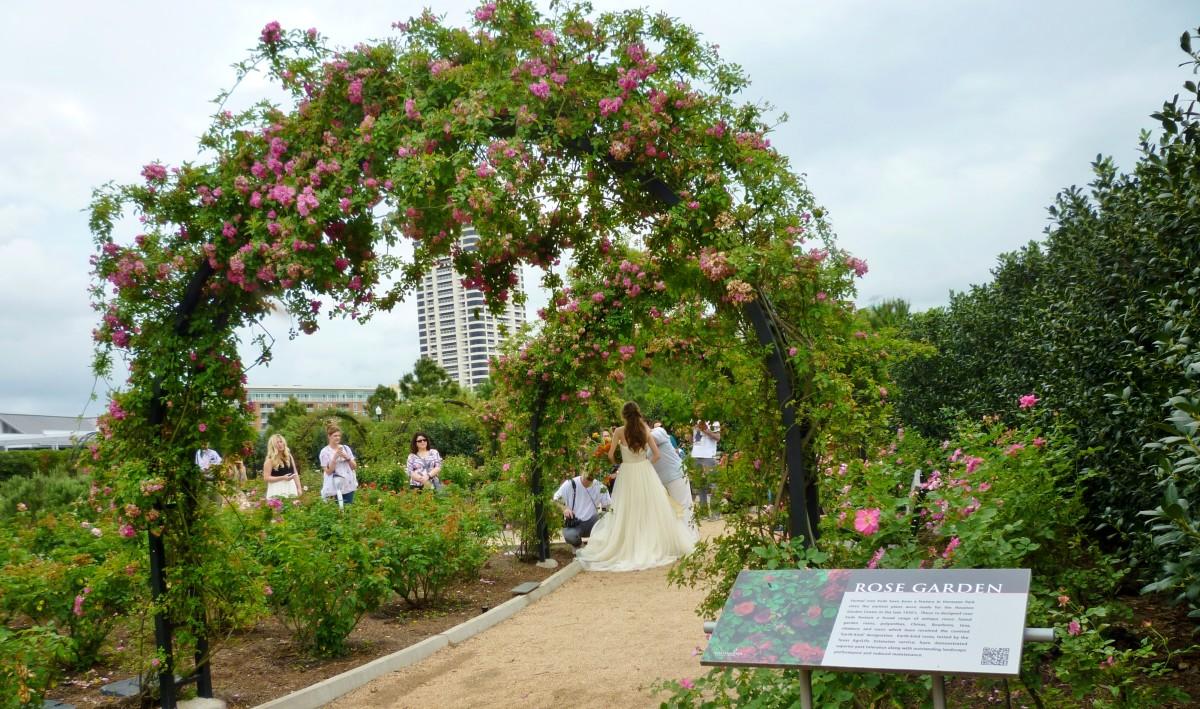 Rose Garden portion of the McGovern Centennial Gardens in Hermann Park