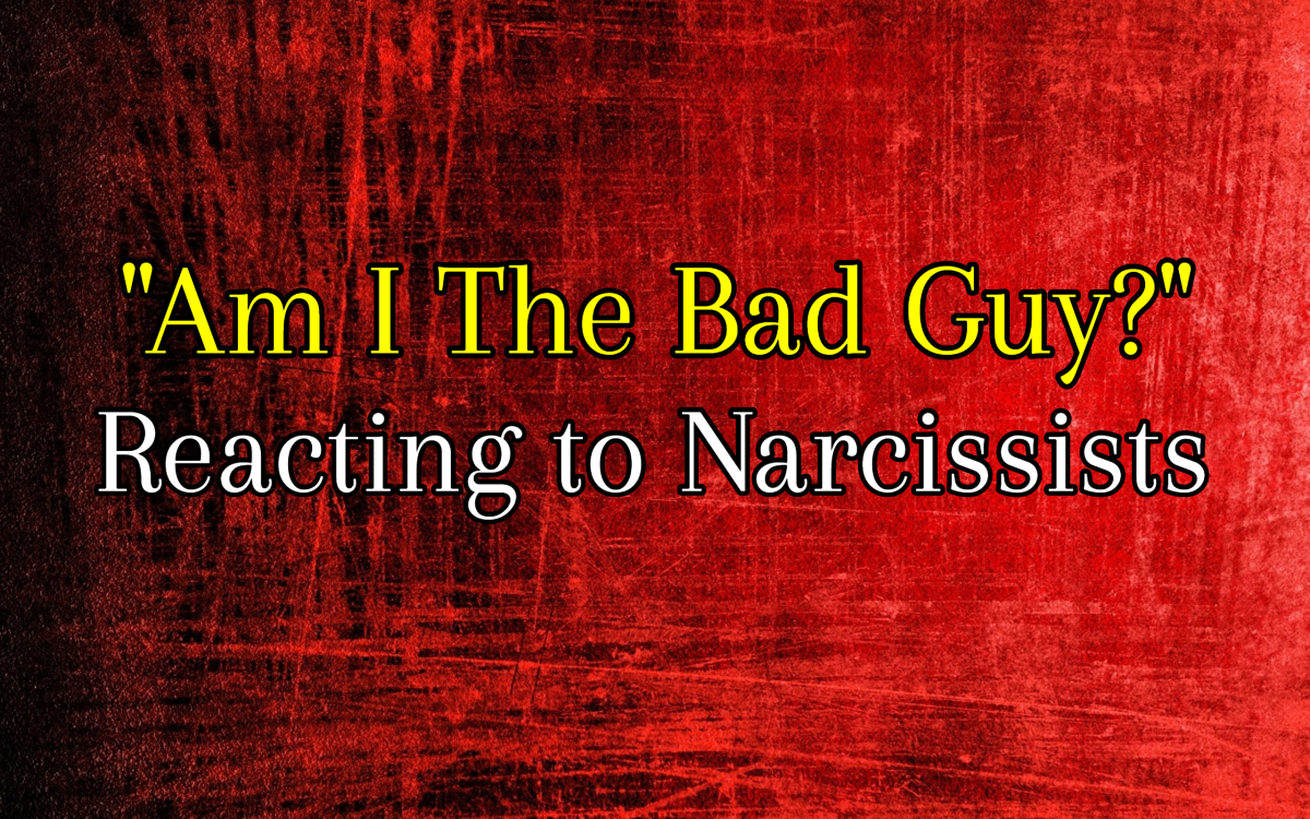 am-i-the-bad-guy-reacting-to-narcissists