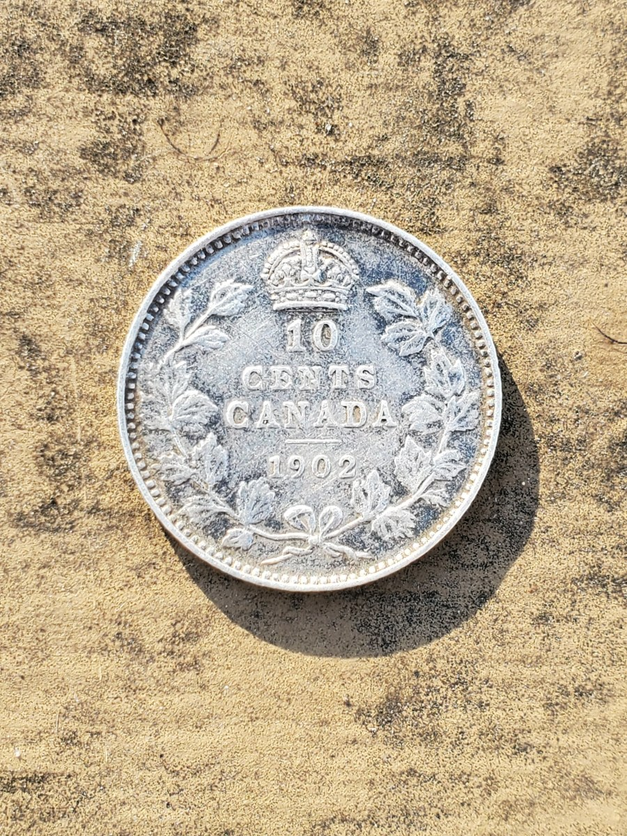 I found this 10 cent Canadian silver coin in the same field where I found the Japanese 1/2 Sen. The coin is dated 1902.