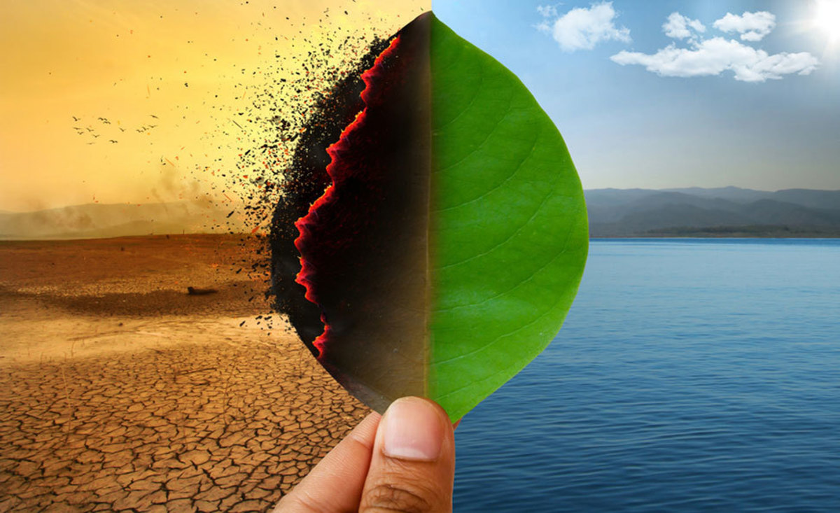 How Real Is Climate Change?