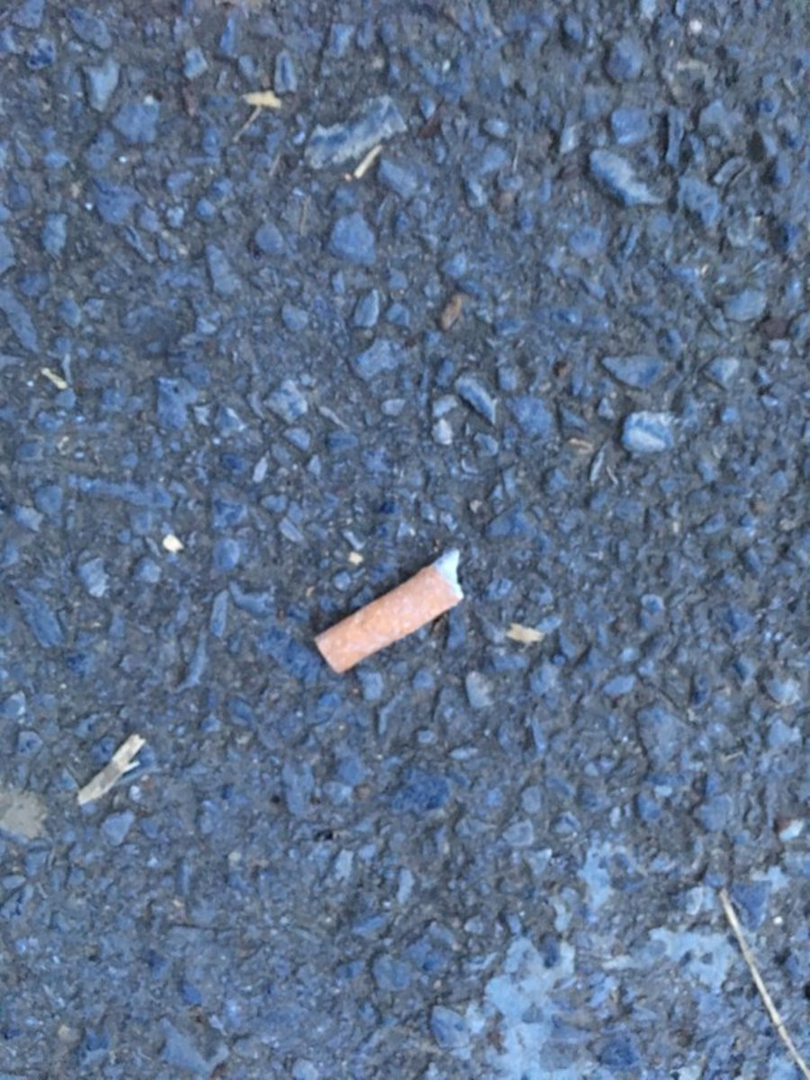 if-you-smoke-cigarettes-dont-leave-your-butts-and-litter-on-the-ground